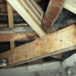 replaced roof joist